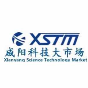 咸阳科技大市场